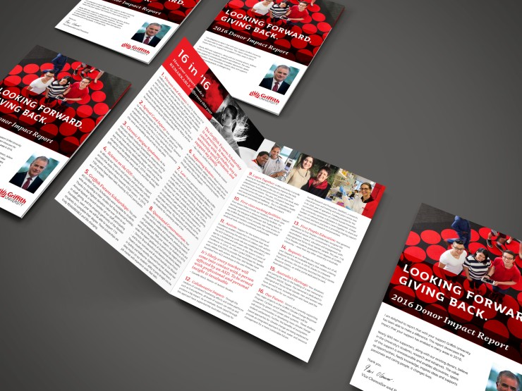 Donor Report Mockup